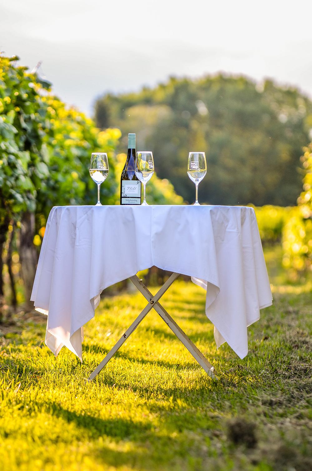 Tisch mit Wein im Weingarten