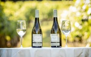 Weinflasche Welschriesling und Sauvignon Blanc von Kohl