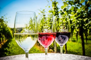 Rotwein, Rosewein und Weißwein im Glas